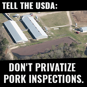 Tell the USDA: don't privatize pork inspections